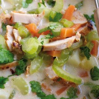 Maaltijdsoep met kip op Indische wijze